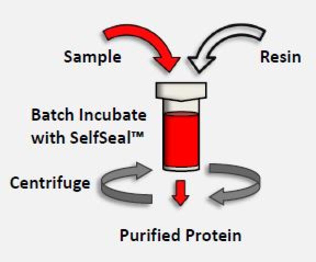 1-Step Batch spin columns process image