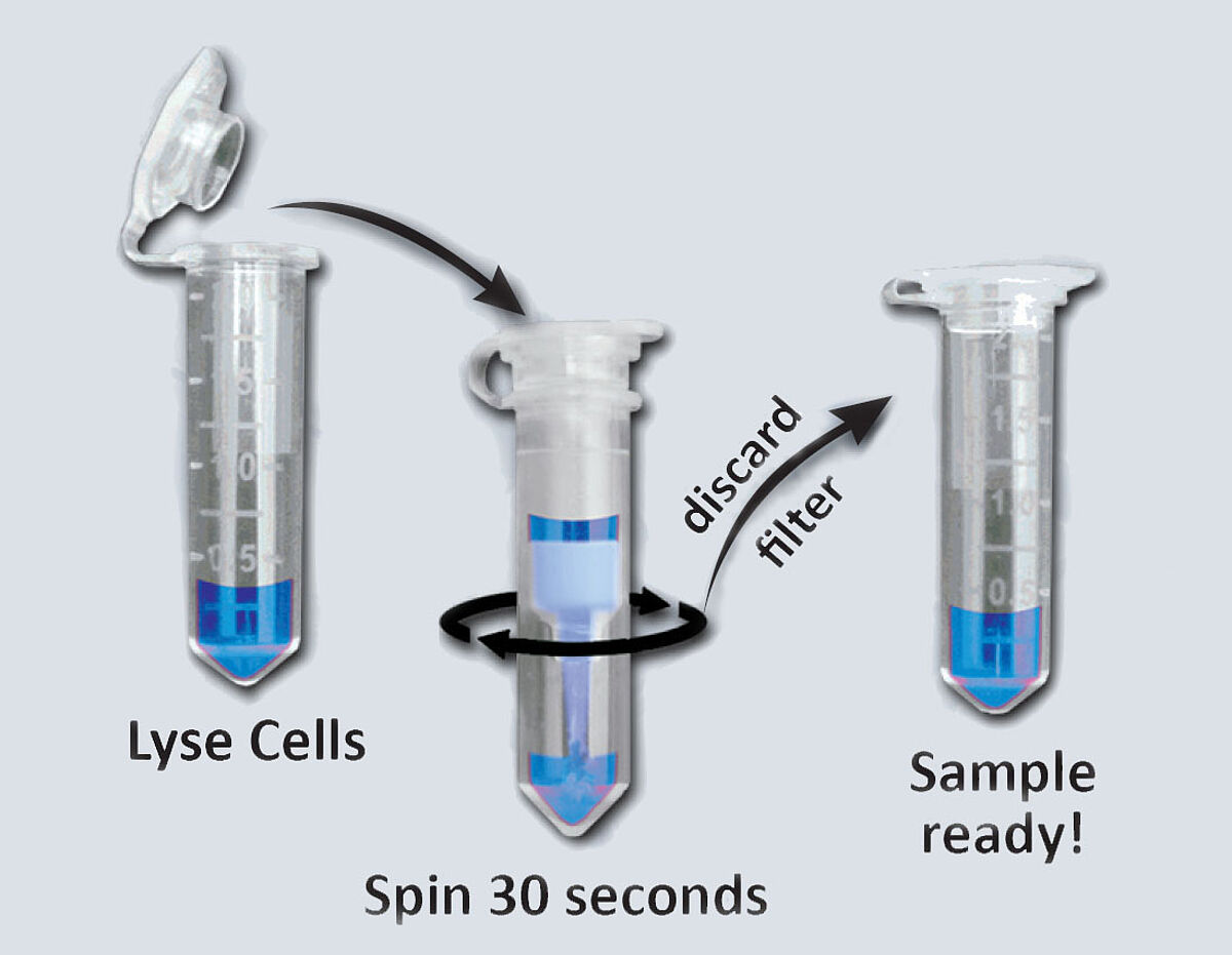 Cell fractionation with spin-columns by Invent Biotech