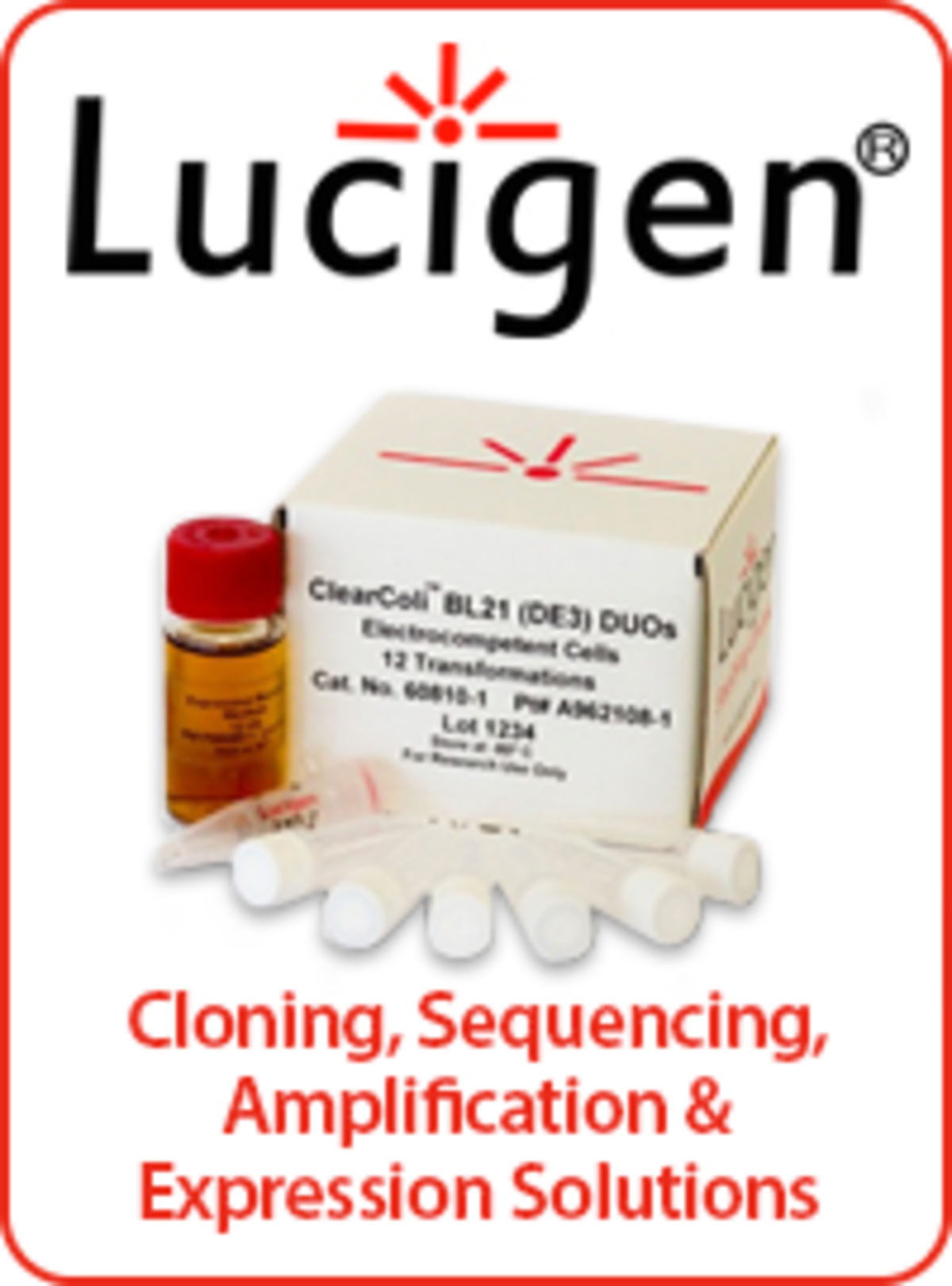 Lucigen competent cells package image