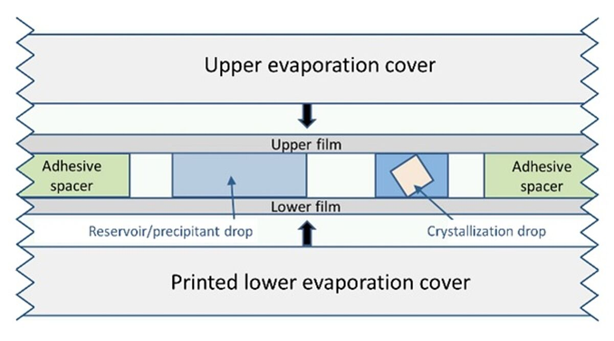 DiffraX plate for loop-free protein crystallization image