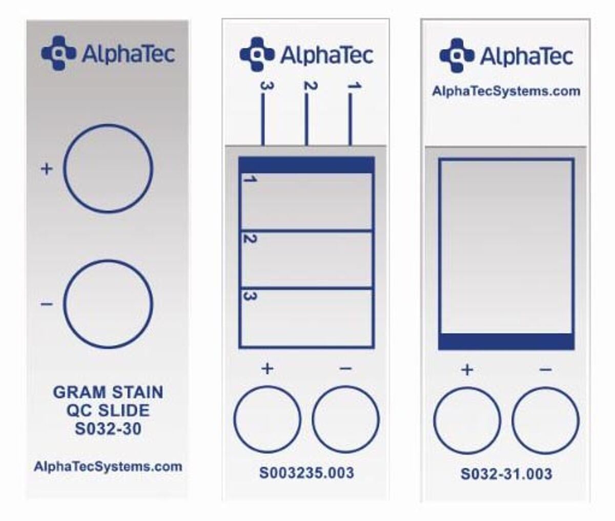 Quality control slides for gram stain by Alpha-Ted