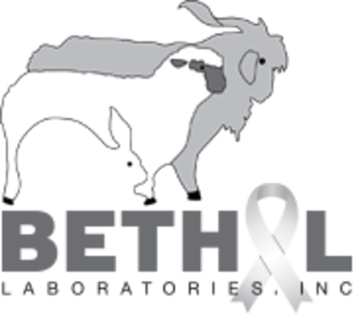 Bethyl square logo with ribbon